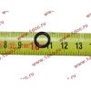 Кольцо уплотнительное форсунки резиновое малое H3 HOWO (ХОВО) VG1540080095 фото 2 Казань