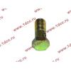 Болт пустотелый М10х1,0 (штуцер топливный) H HOWO (ХОВО) 81500070054 фото 3 Казань